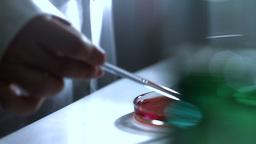 Laboratory CSI 193 investigating dolly stylized Stock Video Footage