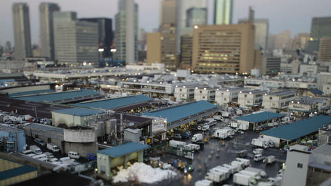Time Lapse from Tsukiji market,in Tokyo,Japan Footage