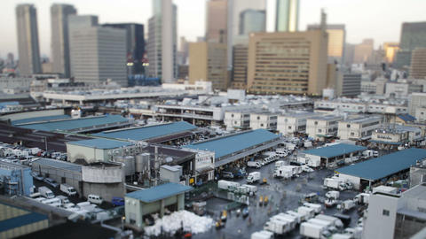 Time Lapse from Tsukiji market,in Tokyo,Japan Stock Video Footage