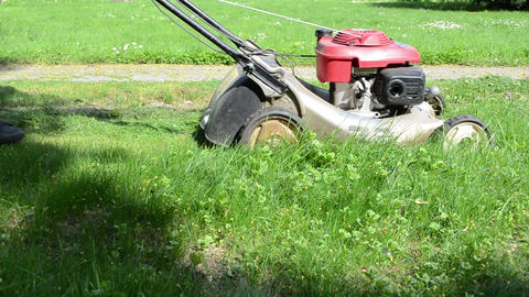 gardener woman cut grass lawn with mower cutter near stone path Live Action