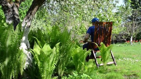 Tired gardener man sit wooden chair fern plants bloom apple tree Footage