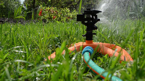 Sprinkler spray watering flowers and lawn grass in garden Footage