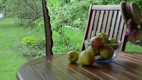 Apples in glass dish and bower net move in wind in garden Footage