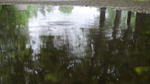 Closeup of puddle water and tree reflections and rain drops fall Footage