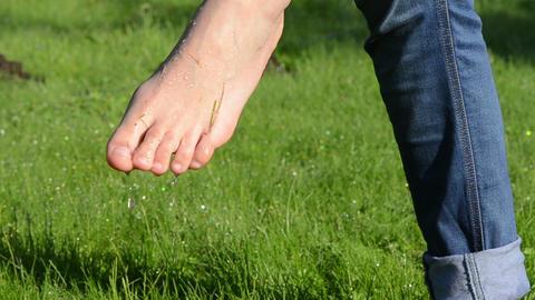 Dew water drops on wet barefoot foot walking in morning meadow Footage