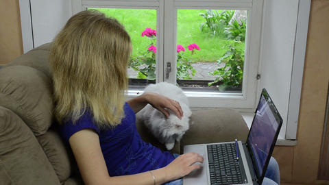 young businesswoman sit on armchair and work with laptop and cat Footage