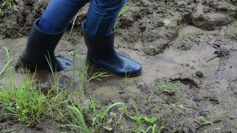 Woman legs with gumboots walk on wet dirt mud leaves footprints Footage