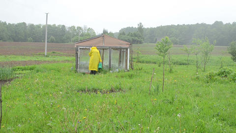Woman in waterproof coat with watering-can to garden greenhouse Footage