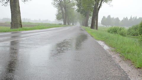 Closeup of water rain drops fall on asphalt road between trees Footage