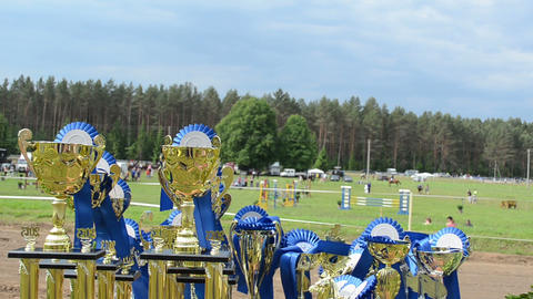 Horse racing cups awards prepared for winners. Rider competition Footage