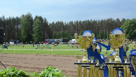 Steeplechase Horse Racing Cups Awards Prepared For Winners stock footage