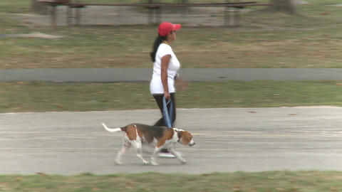 Women Walking Their Dogs (5 of 5) Footage