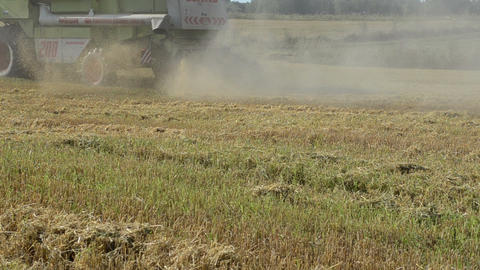 combine machine harvest wheat agriculture field Footage