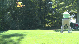 Golfer swings with driver to hit ball off tee (1 of 2) Footage