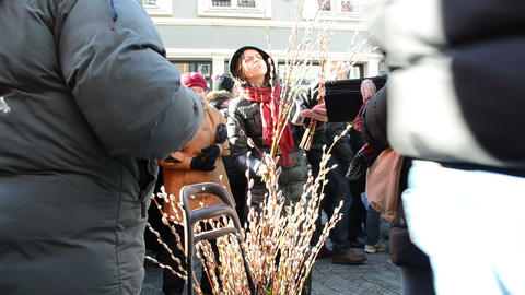 people buy catkins plant branch city spring event festival fair Footage