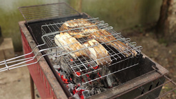 Cooking Fish On The Coals stock footage