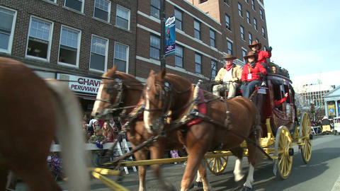 Horses and stage coach at parade Live Action