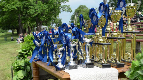 Horse race competition cups trophy for winners near hippodrome Live Action
