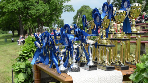 Horse race competition cups trophy for winners near... Stock Video Footage