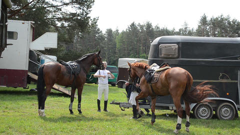 People riders prepare horses for steeplechase race Stock Video Footage