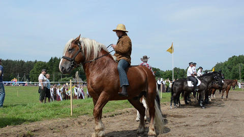 cowboys on horse, police riders and people in public... Stock Video Footage