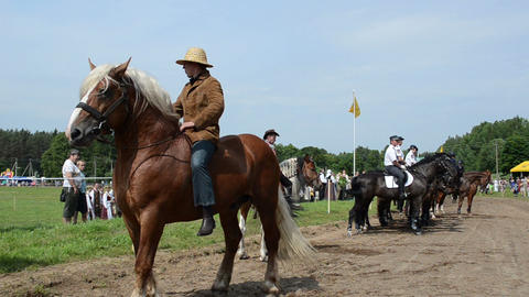 cowboys on horse, police riders and people in public festival Footage
