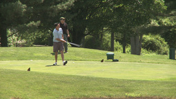 Male golfers tee off (3 of 4) Footage