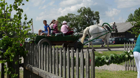 tourists go in horse carriage and artists in traditional... Stock Video Footage
