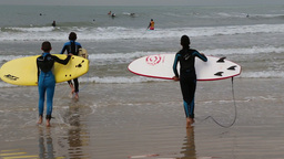 Young surfers entering the sea water Footage