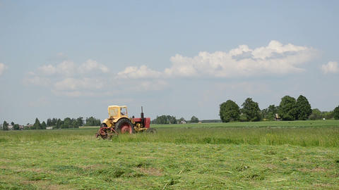 farmer in small tractor cutting the grass Stock Video Footage
