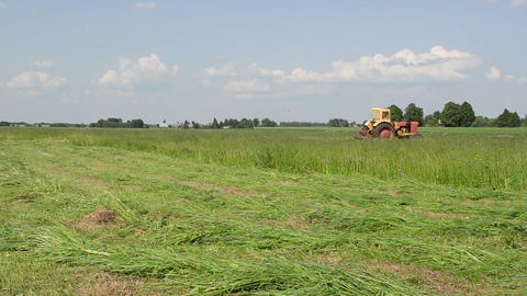 tractor mowing grass beautiful grass tufts lie cut Stock Video Footage