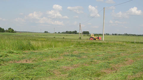 farmer cutting grass small red tractor Footage