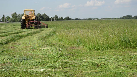 tractor makes sharp turn in meadow and leaves cut grass tufts Live Action