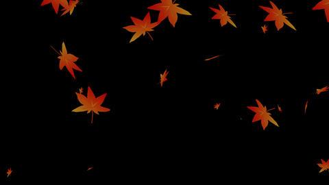 Momiji Hubuki Animation