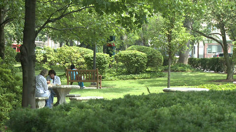 People sitting in a park Stock Video Footage