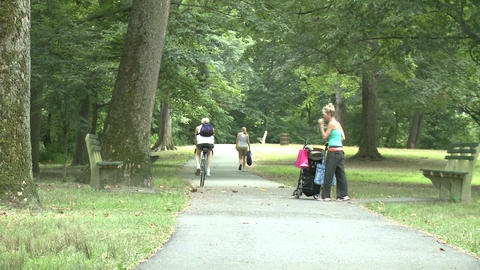 Woman with stroller walking in park Stock Video Footage