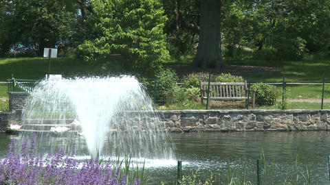 Attractive fountain in center of lake (3 of 3) Stock Video Footage