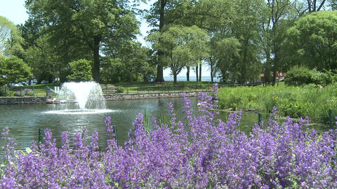 Attractive fountain in center of lake (1 of 3) Stock Video Footage