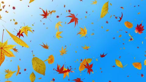 Autumn Leaf tornado Dr 2 4 K Animation