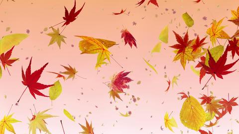 Autumn Leaf tornado G 2r 2 4 K Animation