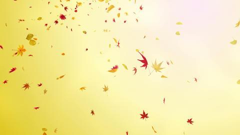 Autumn Leaf tornado Jr 2 4 K Animation