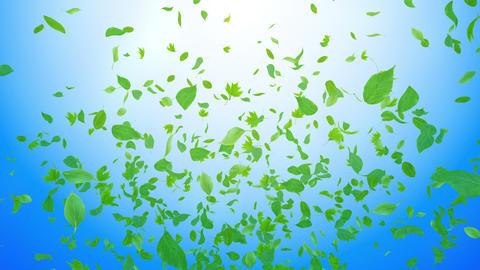 Green Leaf fountain Bb 4 K Animation