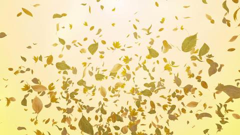 Green Leaf fountain Br 4 K Animation
