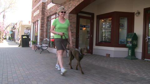 Woman walking her Chocolate Lab down the sidewalk (2 of 2) Footage