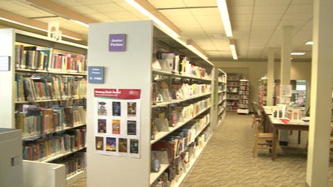 Rows of books on shelves in the library (3 of 3) Footage