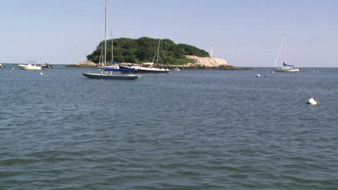 A small tree lined island with boats moored in front (2 of 3) Footage