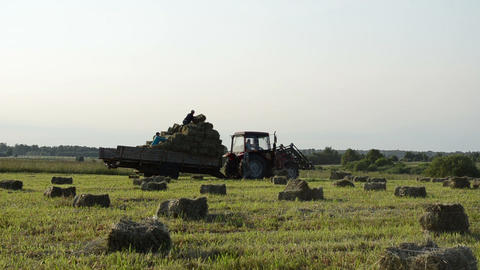 Tractor drive in field and farmer people load it with hay bales Footage