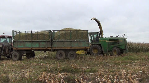 agriculture field heavy machinery harvest autumn maize corn Footage