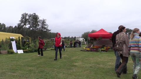 People walk between plants in botanical festival fair Footage