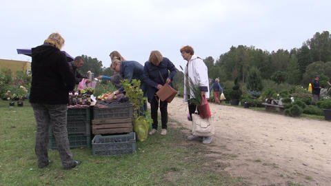 people buy apple, plum, nut and other ecologic food from farmer Footage